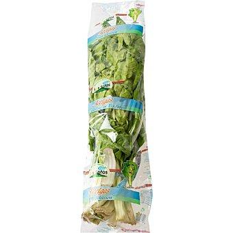 Los satas Acelgas verdes peso aproximado Manojo 1 unidad