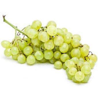 Uva blanca sin semilla balear 1000 kg