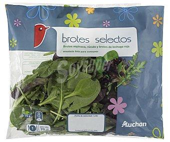 Auchan Brotes selectos 70g