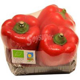 Pimiento rojo ecológico Bandeja 600 g