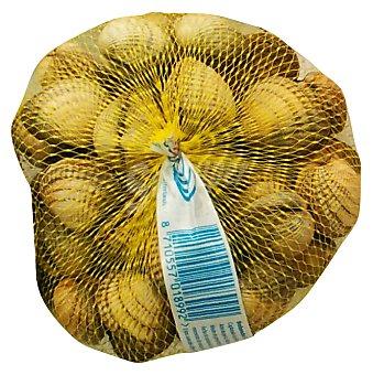 VARIOS Berberecho fresco (entregas viernes, sabados y visperas festivos) a granel 250 g peso aprox.