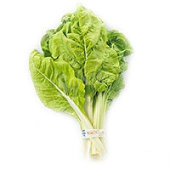 Acelga verde 1,00 kg