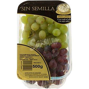 LA VENDIMIA uva blanca y rosada sin semilla Tarrina 500 g