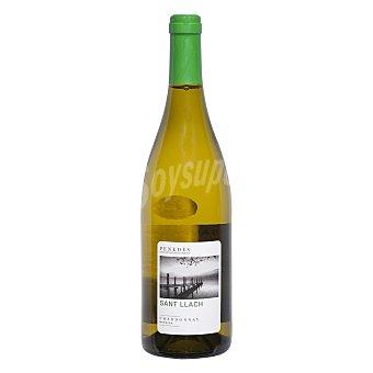 Sant Llach Vino D.O. Penedés blanco chardonnay - Exclusivo Carrefour 75 cl