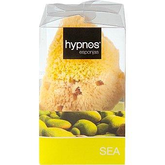 Hypnos Esponja de baño Sea natural Bolsa 1 unidad