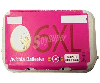 AVICOLA BALLESTER Huevos clase XL y categoria A 6 uds