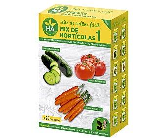 HA-Huerto y Jardín Conjunto de semillas para sembrar pepino, tomate y zanahorias. El kit también incluye 8 pastillas germinadoras, 8 macetas y 3 sobres con las semillas 8 pastillas