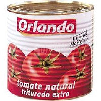 Orlando Tomate triturado Lata 3 kg