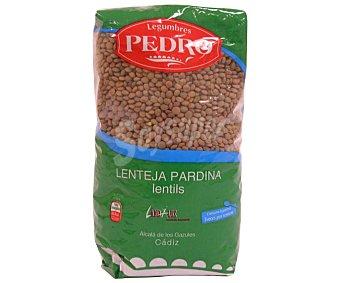 Pedro Lenteja pardina Paquete de 1 kilogramo