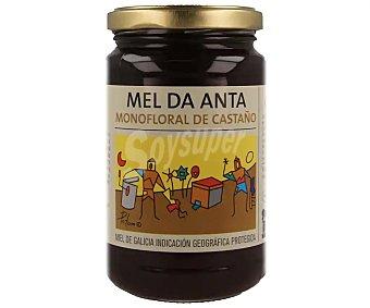 Mel da anta Miel monofloral de castaño de Galicia 500 g