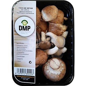 D.M.P. Trio de setas de cultivo Bandeja 200 g
