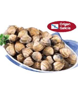 Berberechos Malla de 1 kg