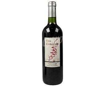 VIÑA ALAMBRADA Vino tinto con denominación de origen La Mancha Botella de 75 cl