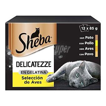 Sheba Comida para gatos gelatina selección aves 12 uds. x 85 g