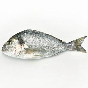Dorada de estero kg (peso aprox ud 1 kg)