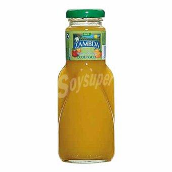 Lambda Zumo ecológico mango y naranja 25 cl