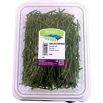 Herbex Salicornia unidad 100 g unidad 100 g