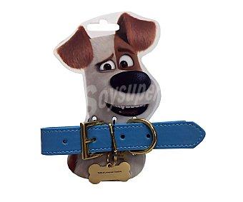Mascotas Collar con chapa identificativa Max Talla S 2