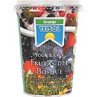 Teisol Yogur con frutas del bosque Bote 500 g