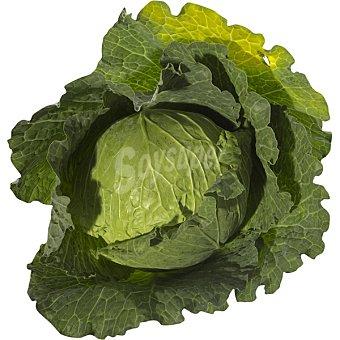 LA HUERTA Repollo de Agricultura Ecológica - Pieza, Peso Aproximado 800 g