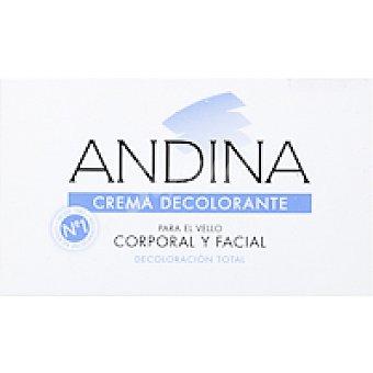 ANDINA Crema decolorante Tarro 100 ml