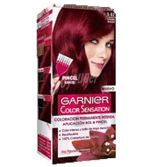 Color Sensation Garnier Tinte tono nº 5,62 1 ud