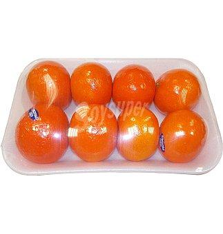 Mandarina clemenvilla 8 unidades 1 KG