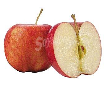FRUTA Manzanas kanzi bandeja 750 gramos