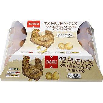 Dagu Huevos clase M-L de gallinas criadas en el suelo libres de jaula estuche 12 unidades