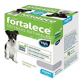 Viyo fortalece Suplemento nutricional Viyo Fortalece para perros puppy 7uds