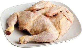 Pollo Especial Churrasco 1,0 kg