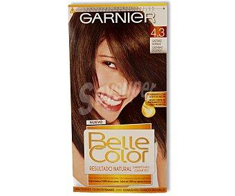 Belle Color Garnier Tte Castaño Dorado 43 1u 1u