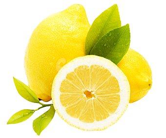 Limón sin tratamiento post cosecha bolsa 500 gramos