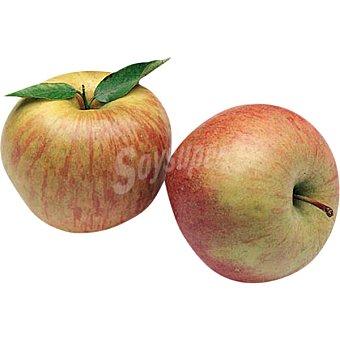 Manzana Fuji al peso 1 kg
