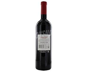 SANGIOVESSE Vino tinto con DO Romagna 75 cl