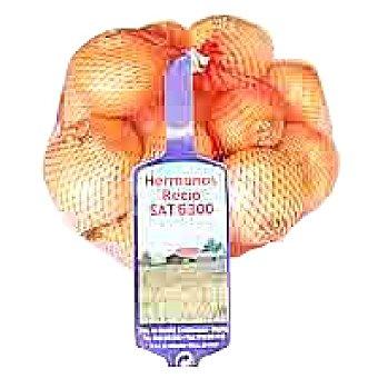 Hermanos Recio Cebollita francesa Malla 500 g