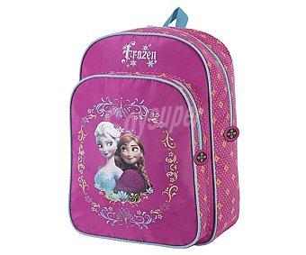 Disney Mochila escolar con asas reforzadas, dos amplios bolsillos frontales con cierre de cremallera de color rosa y con imagen de las dos princesas de la película Forzen 1 unidad