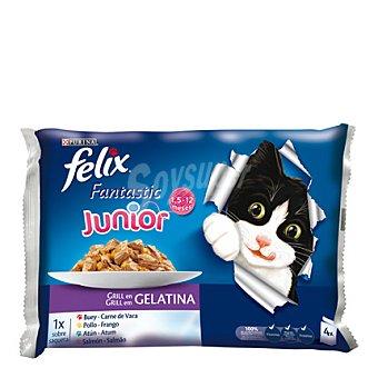 Felix Purina Comida para gatos junior Pack 4x100gr