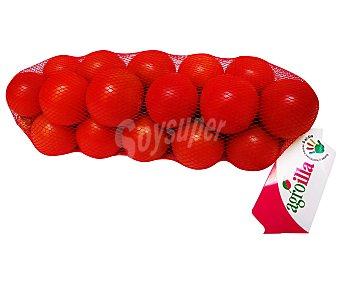 Agroilla Tomate en Ristra de Mallorca Tomate de Mallorca1kg