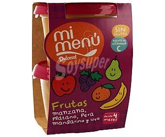 Dulcesol Tarrina 5 frutas manzana plátano pera mandarina y uva 2 unidades de 200 gramos