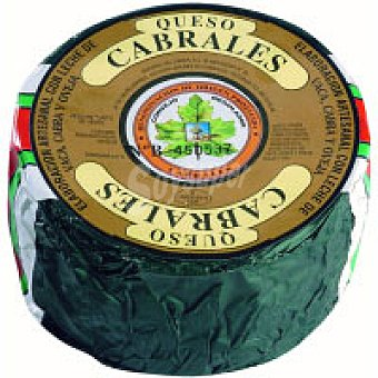Coasa Queso Cabrales mini 1,0 kg