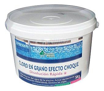 Bosque Verde Piscina cloro grano Paquete 5 kg