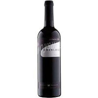 Orvalaiz Vino tinto garnacha D.O. Navarra Botella 75 cl
