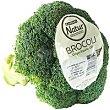 Bróculi Natur, pieza aprox 500 g Eroski