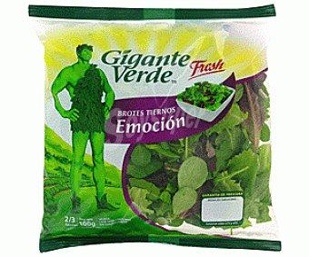 Gigante Verde Ensalada Brotes Emoción 100 Gramos