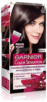 Color Sensation Garnier Tinte castaño oscuro Nº 3.0 1 Unidad