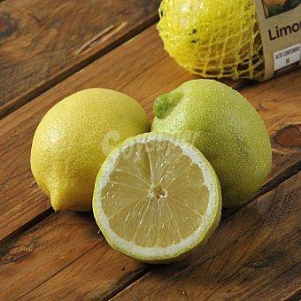 Carrefour Bio Limón Bio Malla de 500 g