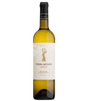 Terramundi Vino albariño Botella de 75 cl