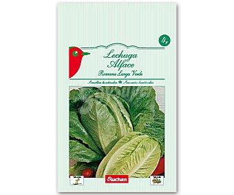 Auchan Semillas para sembrar lechugas romanas de la variedad Valladolid Semillas Lechuga Romana