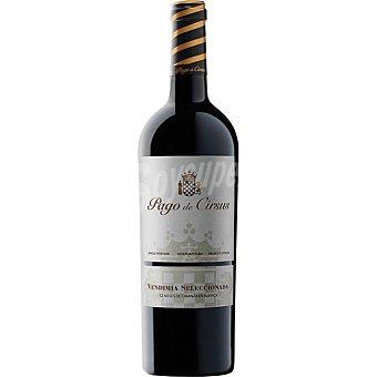 PAGO DE CIRSUS Vino tinto vendimia seleccionada D.O. Navarra botella 75 cl 75 cl